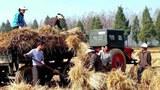 harvest nk farm 303