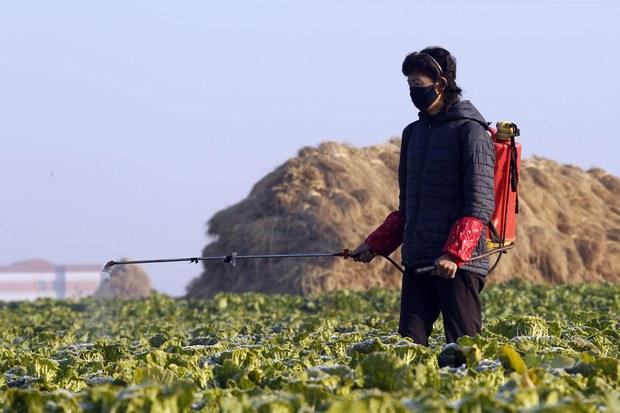 북, 지난달 중국산 농업자재 집중 수입