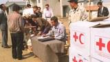 """ICRC """"평양 상주 외국인직원 철수로 베이징사무소가 업무 전담"""""""