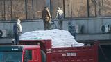 중국의 대북식량 지원 곧 재개