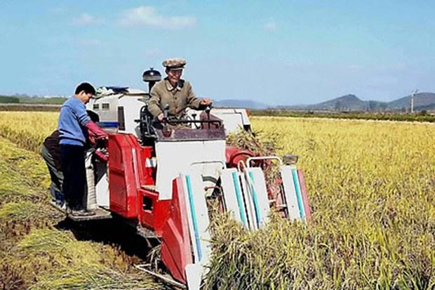 harvest_farm_b