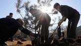 북 산림복구사업 형식에 치우쳐 산림황폐화 심화