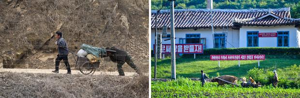 [북중국경서 엿본 북한의 속살] ① 강제 동원∙작업에 내몰린 어린이들