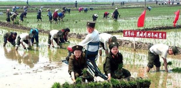 [북한경제, 어제와 오늘]공허한 구호