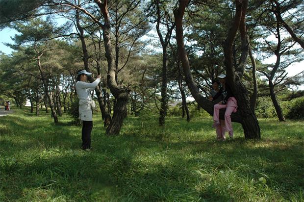 휴일에 평양 근교에서 소풍을 즐기고 있는 평양 여성들. 옷차림이 비교적 세련돼 보인다. (2011년 9월 22일)