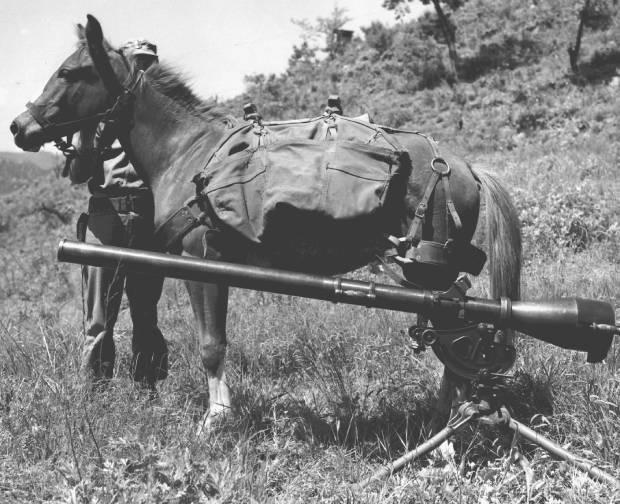 6.25 한국전쟁에 참전해 임무를 수행 중인 '레클리스'.
