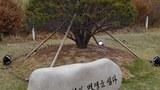 moon_kim_anniversary_b