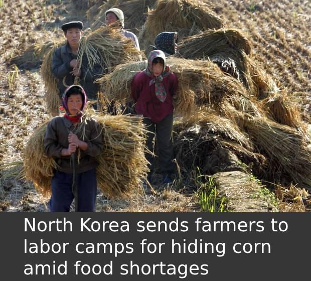 labor_camps.jpg
