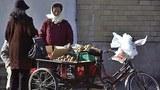 pyongyang fruit vender 305