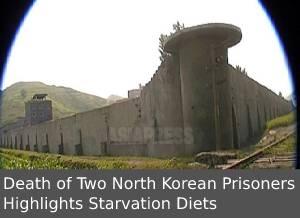 Starvation_Diets.jpg