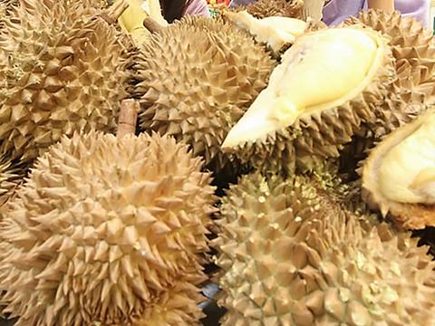 태국산 수입 과일 두리안.
