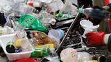 플라스틱과의 전쟁‥ 지구를 지켜라