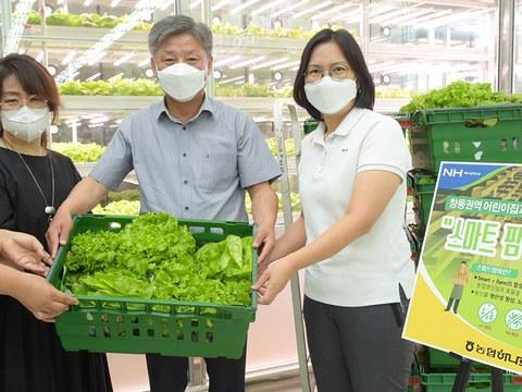 농협 하나로마트 서울 창동점이 '스마트 팜'에서 재배한 채소 300포기를 어린이집에 증정한다고 밝혔다.