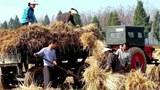nk_load_harvest-305.jpg