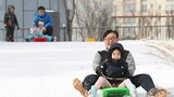 snow_sleigh-620.jpg