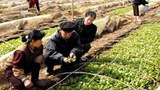 nampo_hwado_farm-305.jpg