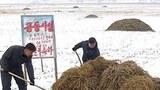 bonghwa_prep_agriculture-305.jpg
