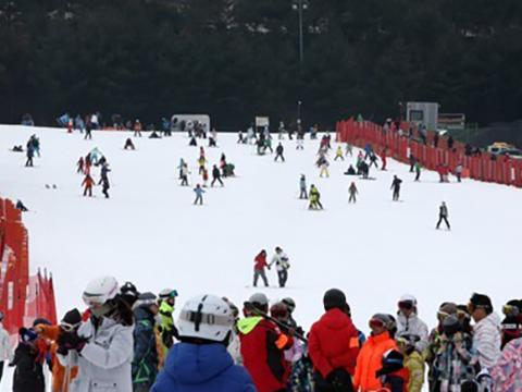 강원도 홍천의 한 스키장에서 스키를 즐기는 시민들.