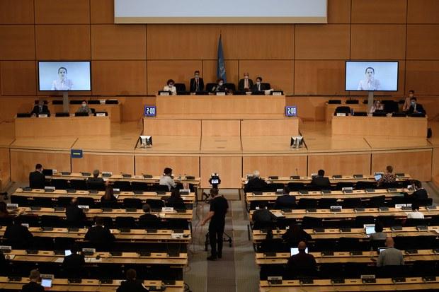 유엔의 북한 인권 결의안 19년 연속 채택