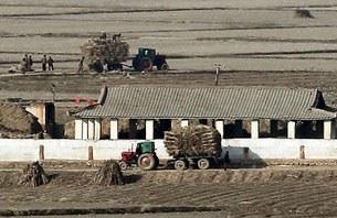 farm_village_305