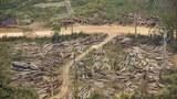 F-loggings