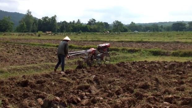 F-Lao-farmer