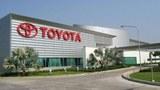 F-Savanh-Toyota