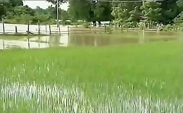 f-flood-savannakheth