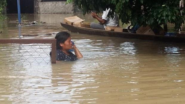 F-Flood-savan
