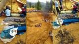 F-Land-slide