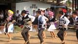 F-Hmong