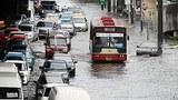 F-floodsss