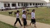 F-nakai-students
