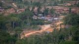 F-illegal-logging-vietnam