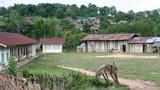 F-village-school