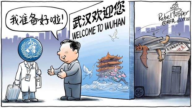 变态辣椒:世卫专家抵达武汉调查病毒溯源
