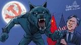 """楊潔篪用16分鐘斥責美國,這種""""戰狼外交""""是演戲給國內人民看。"""