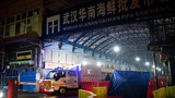 世衛專家進入武漢華南海鮮市場考察