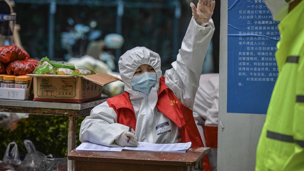 2020年3月16日,武汉的一个志愿者在分发居民订购的蔬菜。(法新社)