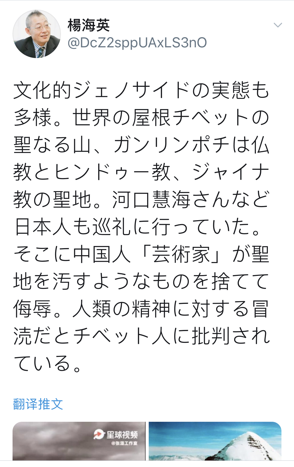 张洹事件引起日本静冈大学教授、蒙古人学者杨海英先生关注。(网络截图)