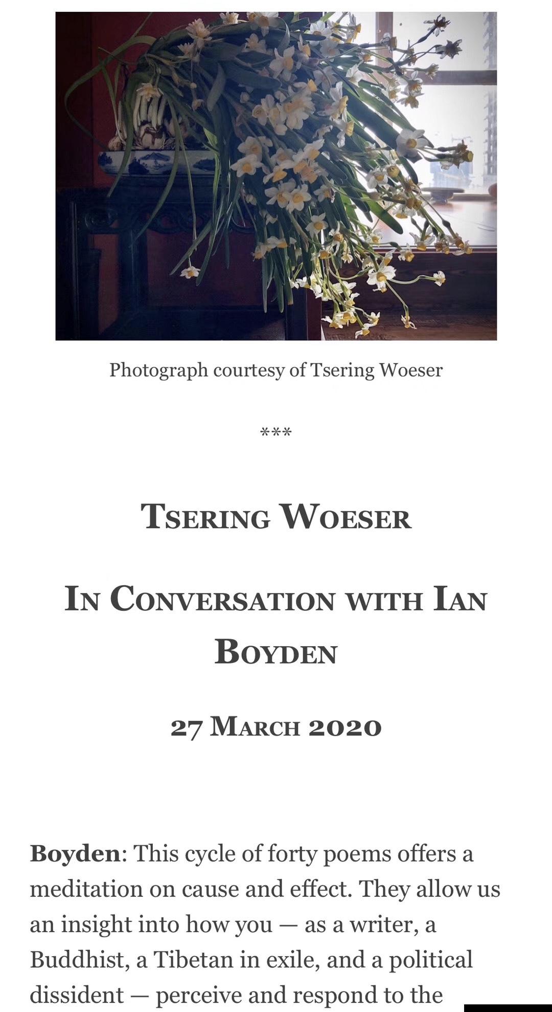 图说:4月18日,有关中国文化与政治的知名网站《China Heritage》(《遗典》),发表了我就正在全球大流行的瘟疫——武汉肺炎或新冠病毒——而写的长诗《时疫三行诗》,以及我与居住美国华盛顿州的译者、艺术家、诗人Ian Boyden的对话。(唯色提供)