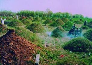 图片:河南一些艾滋病村旧坟丛又添儿童新坟(网友Haoboling/心语提供)