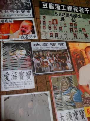 图片:结石宝宝、地震宝宝、疫苗宝宝、血铅宝宝等许多无辜死去的孩子们(心语摄)