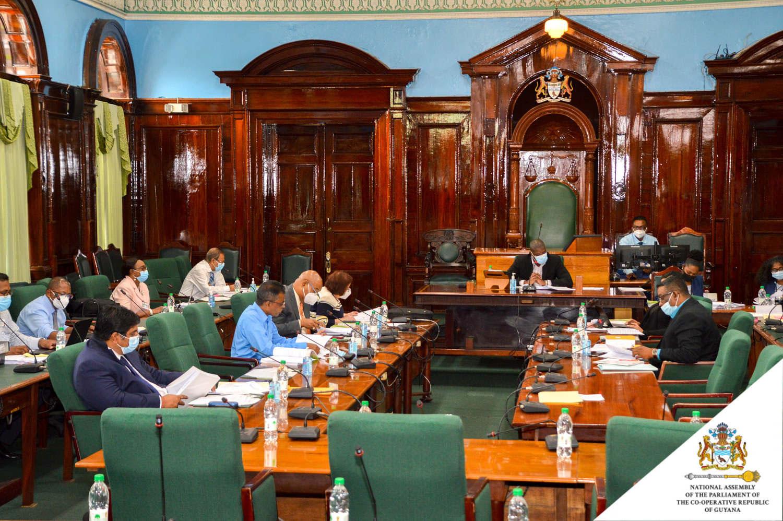 盖亚那合作共和国政府是共和制,议会采民主制。(盖亚那议会脸书 )