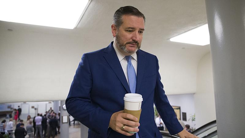 美国参议员克鲁兹(Ted Cruz)(美联社)