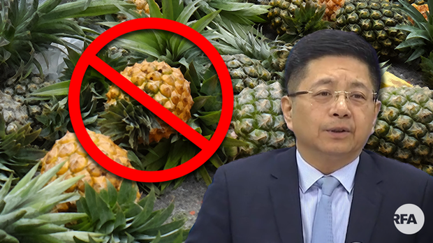 中国突禁台湾凤梨进口  又一个政治的牺牲品?
