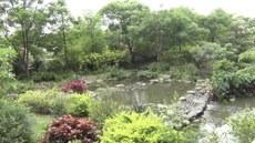 图说:台积电15厂生态池荣获EEWH钻石级认证绿建筑。(苗秋菊拍摄)