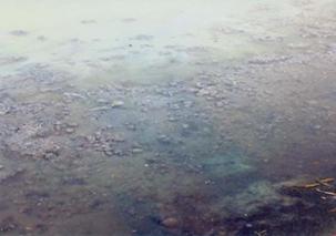 """图片:湖北广水""""新生活纸业运输公司""""的污水未经处理就排入河中,造成河水被污染。(民生观察)"""
