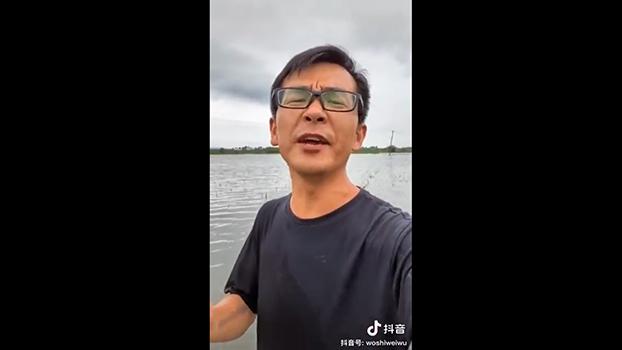 安徽一名农民表示,洪水淹没了他种植的三百亩稻田。(视频截图)