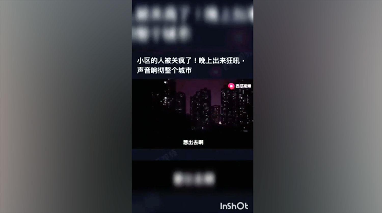 武汉人集体开窗向外嘶吼。(西瓜视频)